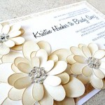 düğün-davetiyeleri (2)
