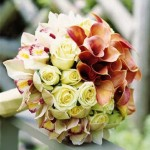 gelin-çiçeğim (2)