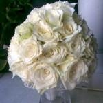 gelinin-çiçeği (5)