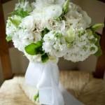 bir-demet-gelin-çiçeği (10)
