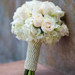 bir-demet-gelin-çiçeği (3)