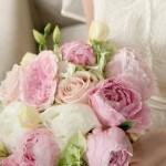 bir-demet-gelin-çiçeği (4)