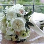 bir-demet-gelin-çiçeği (9)