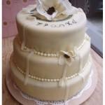 düğün-pastaları (4)