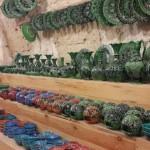kapadokyada-balayı (2)
